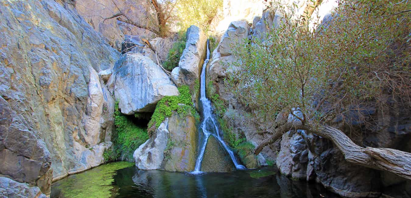 Darwin Falls - Only waterfall in the Death Valley