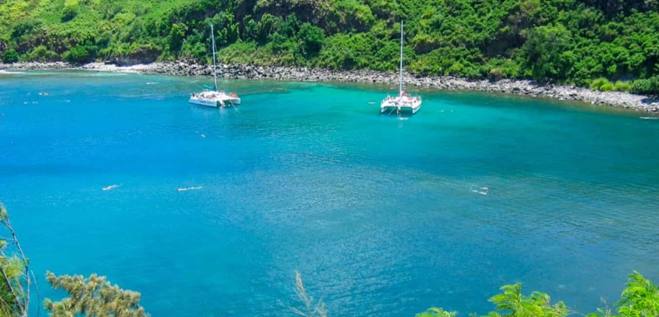 spots to snorkel on Maui - Honolua Bay