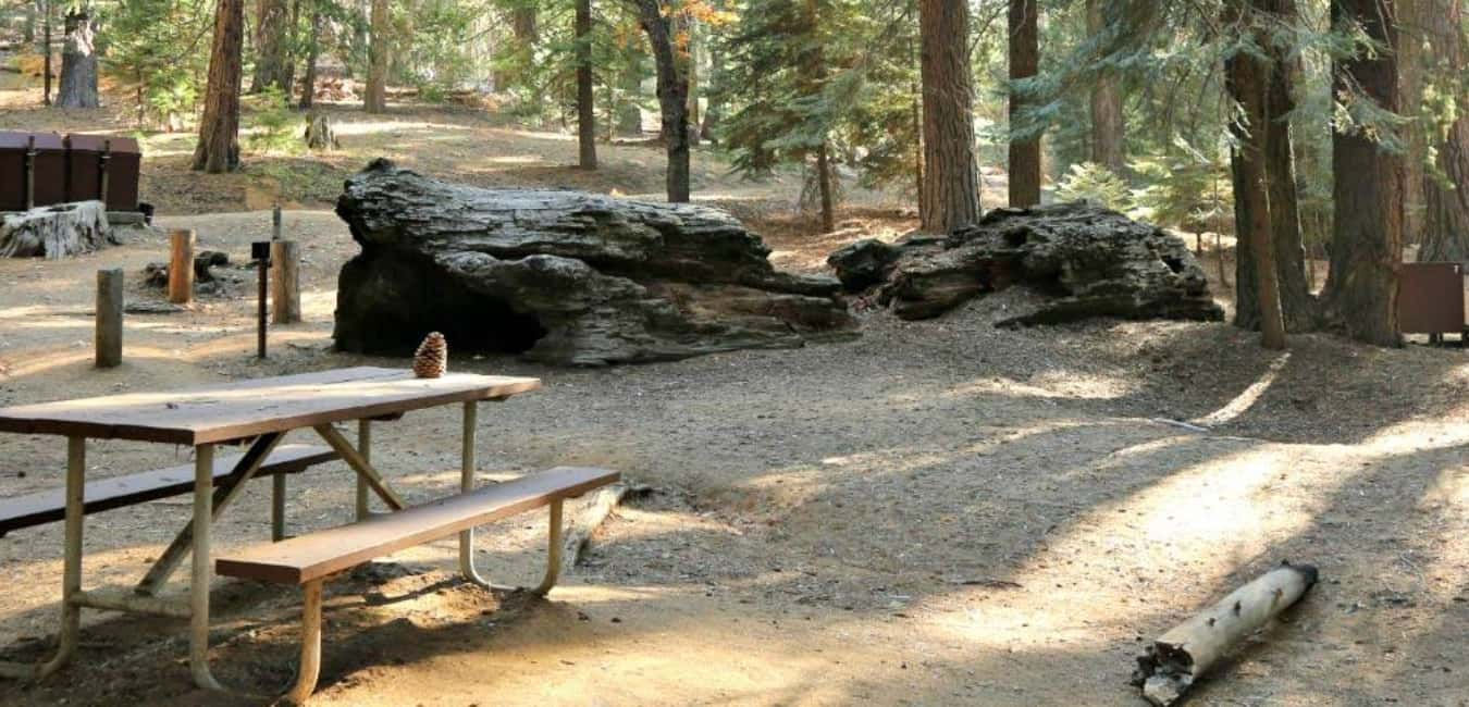 Camping areas in Sequoia National Forest