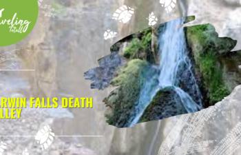 Darwin Falls Death Valley Explore the Most Adventurous Spot