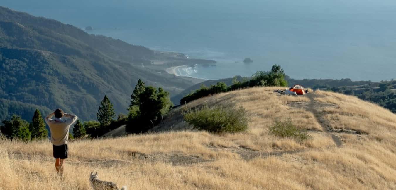 Free Camping at Plaskett Ridge Road