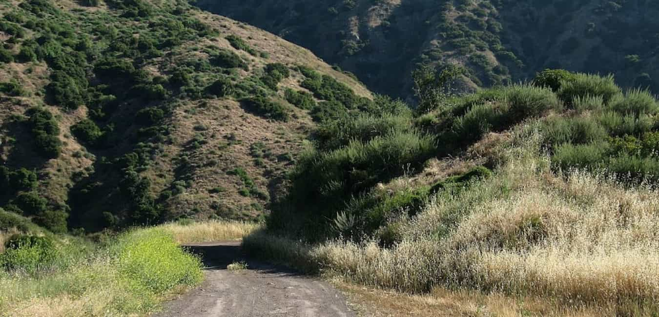 Sycamore Flat Road – Sycamore Flat Campground