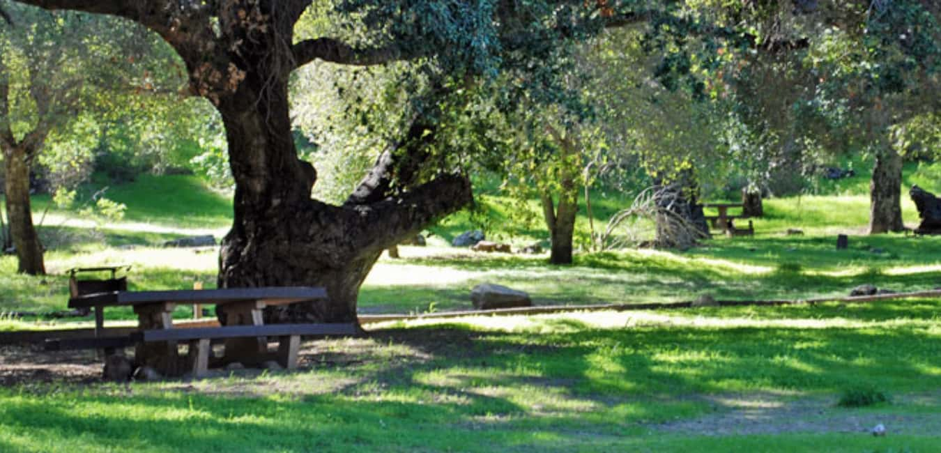 fremont campground santa barbara california