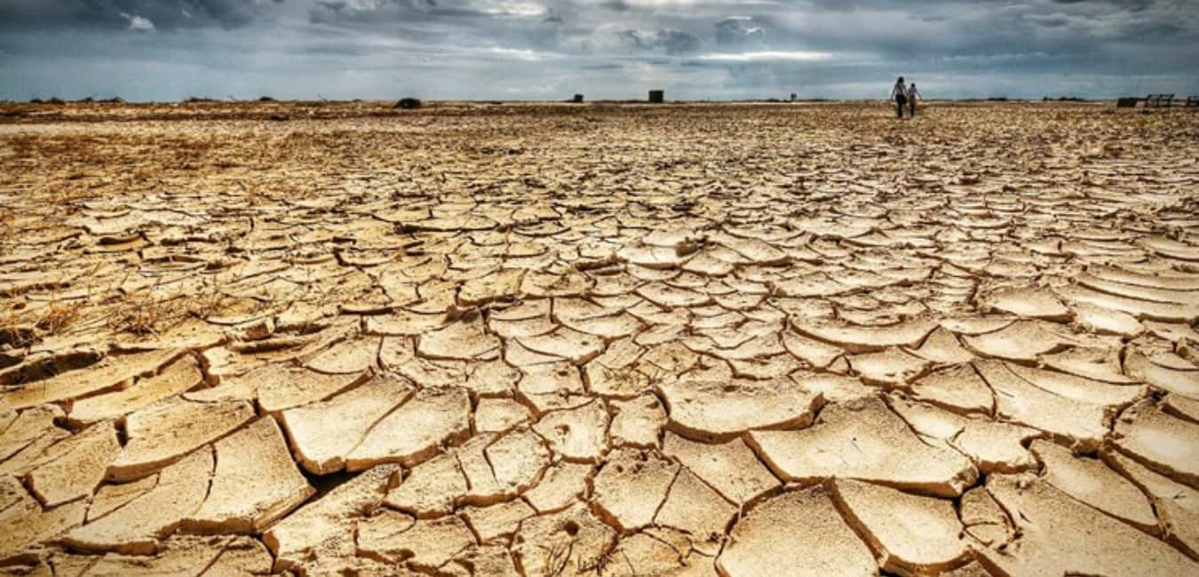 The Driest Land