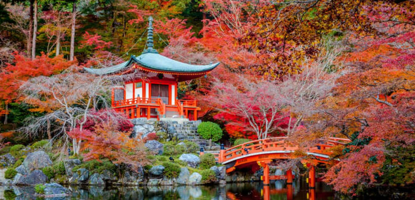 Best Parks in Portland - Japanese Garden