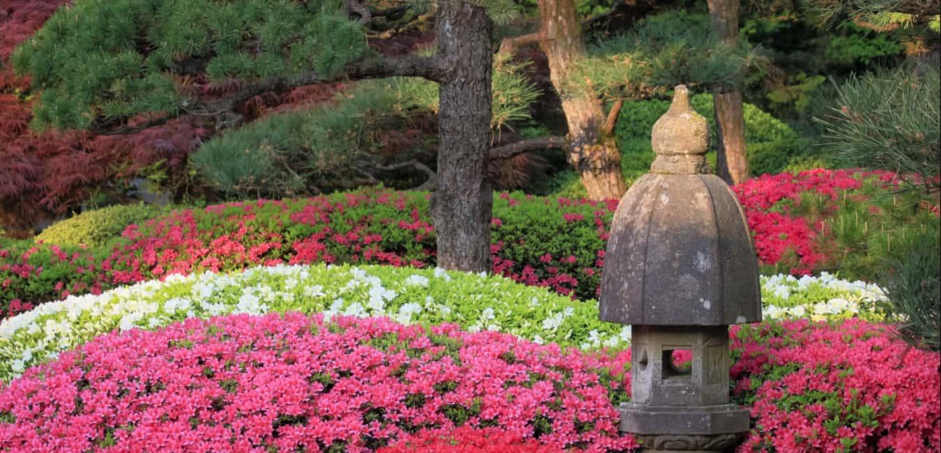 Best Time to Visit Portland Japanese Garden