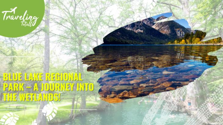 Blue Lake Regional Park – A Journey into The Wetlands!