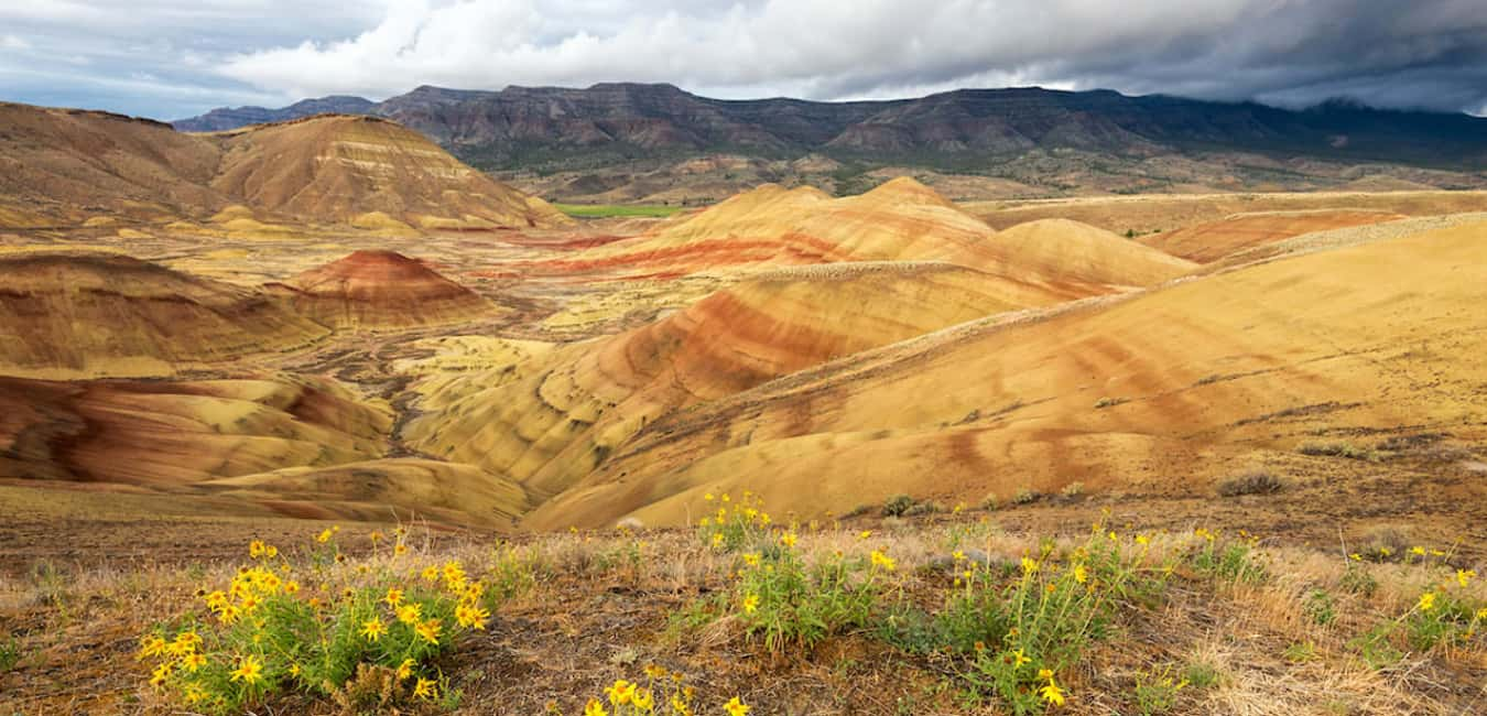 Getting to The Painted Hills