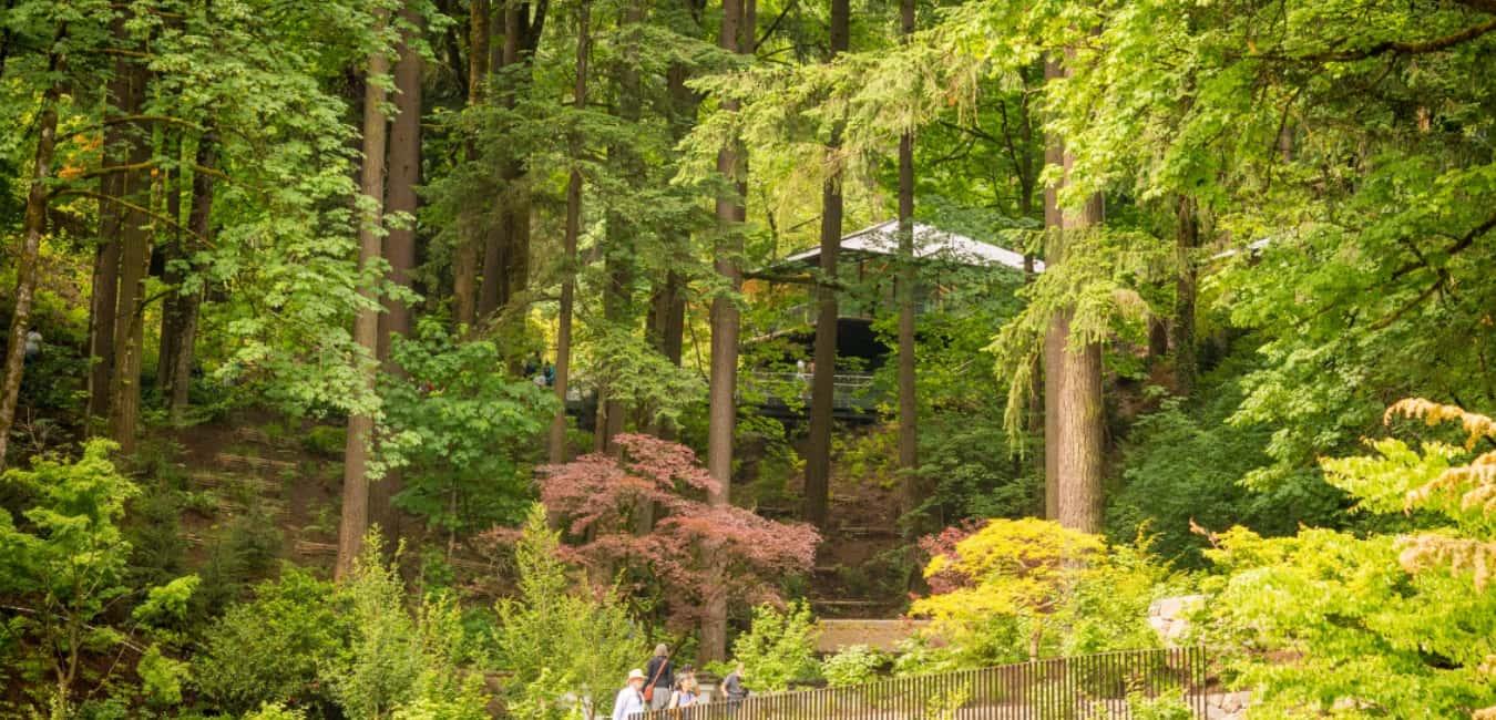 Tsubo-Niwa - Portland Japanese Garden