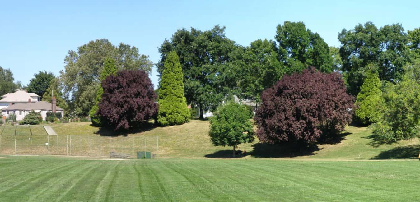 overlook park portland oregon