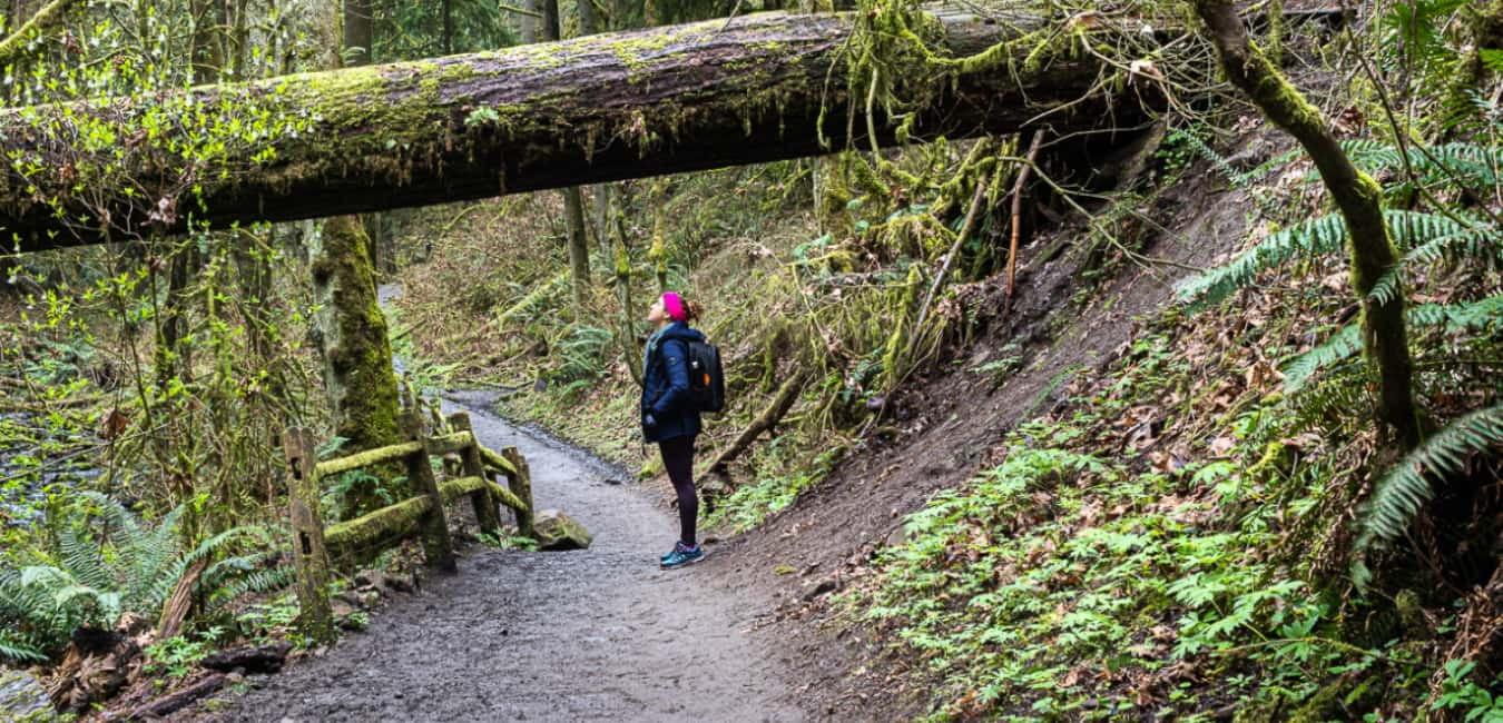 lower macleay park to pittock mansion hike